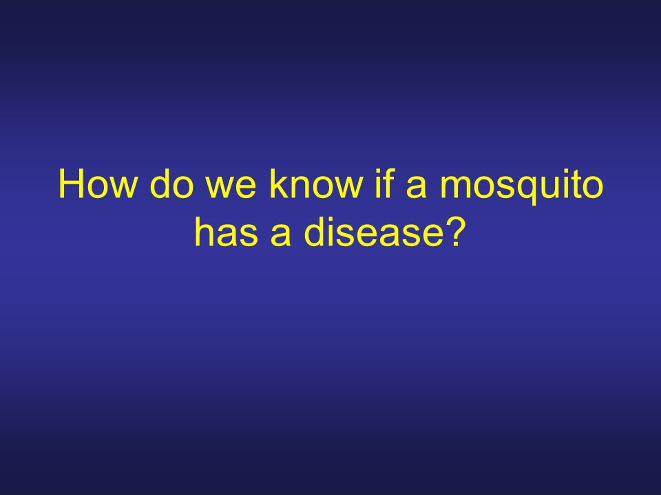 How do we know if a mosquito has a disease