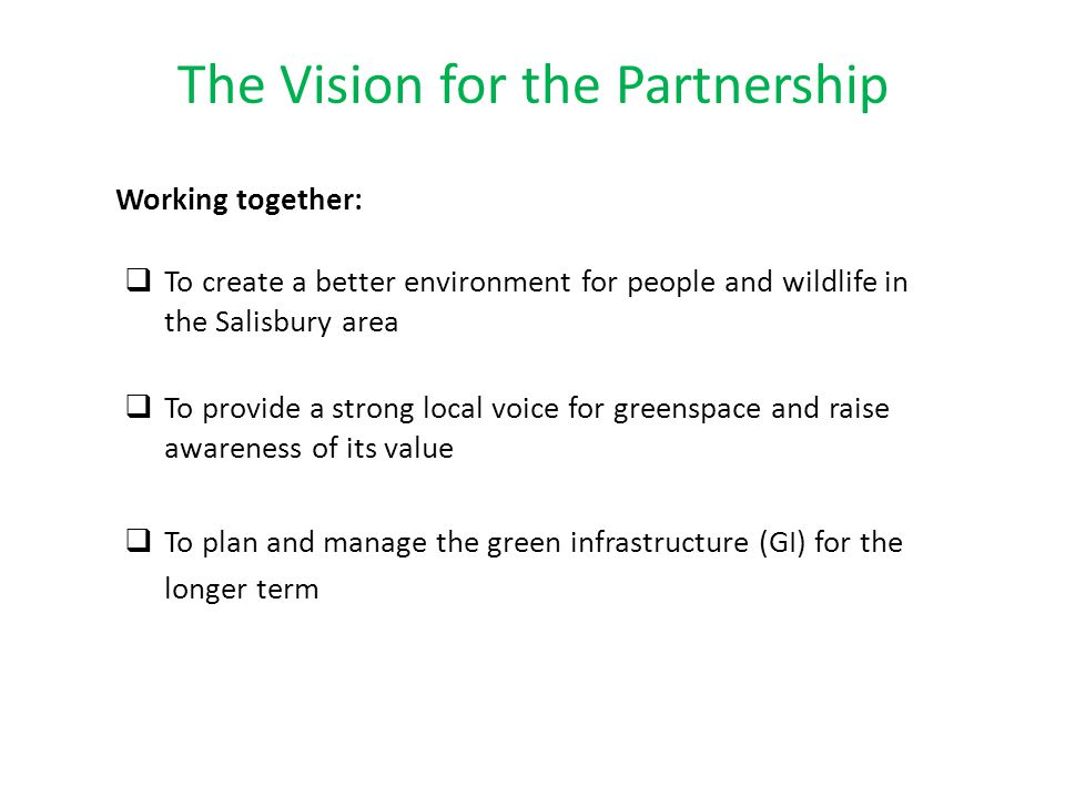 The Vision for the Partnership Working together:  To create a better environment for people and wildlife in the Salisbury area  To provide a strong local voice for greenspace and raise awareness of its value  To plan and manage the green infrastructure (GI) for the longer term