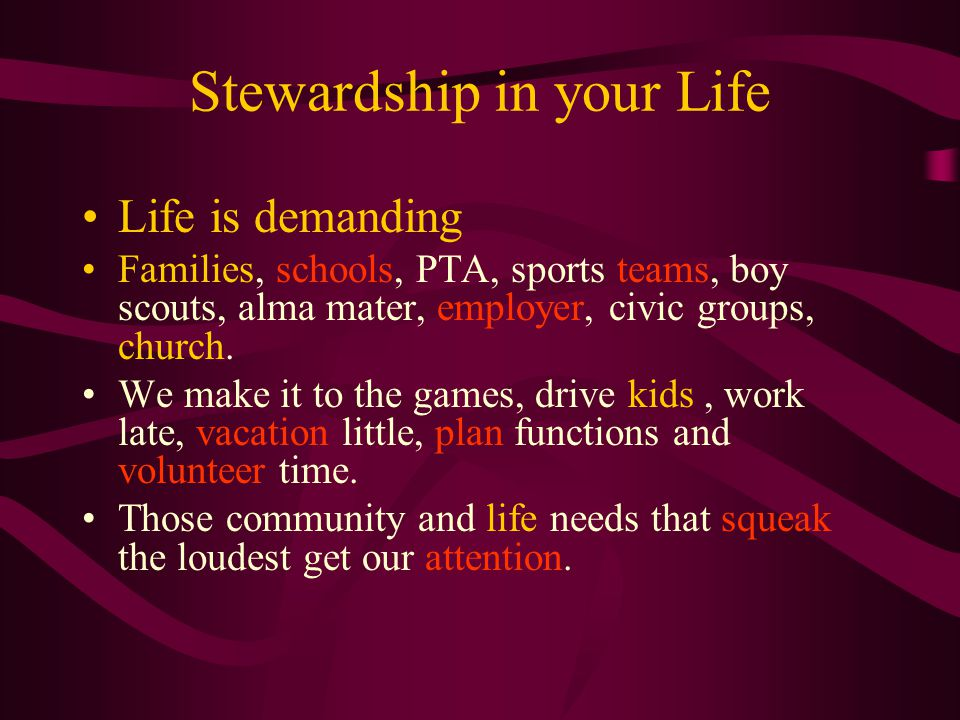 Stewardship in your Life Life is demanding Families, schools, PTA, sports teams, boy scouts, alma mater, employer, civic groups, church.