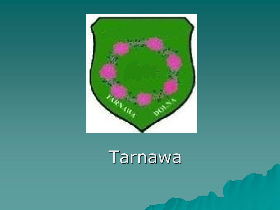 Tarnawa Tarnawa