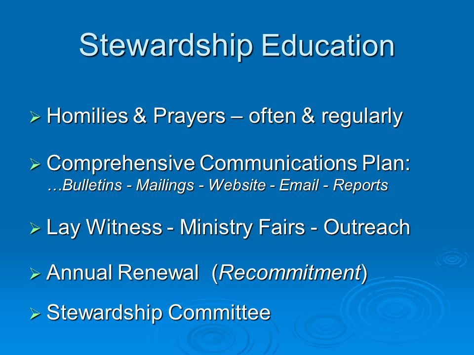 Diocesan Deliverables Stewardship Education  Guidebook, Resources, Examples  Support for improving Parish IT  Provide consulting as required  Host stewardship workshops