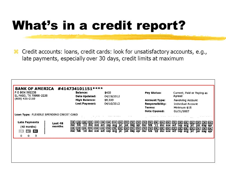 What's in a credit report.