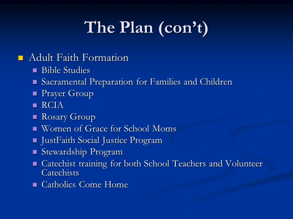 The Plan (con't) Adult Faith Formation Adult Faith Formation Bible Studies Bible Studies Sacramental Preparation for Families and Children Sacramental