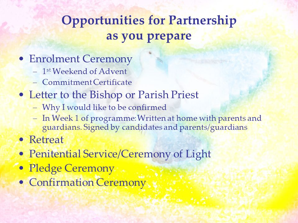 Opportunities for Partnership as you prepare Enrolment Ceremony –1 st Weekend of Advent –Commitment Certificate Letter to the Bishop or Parish Priest