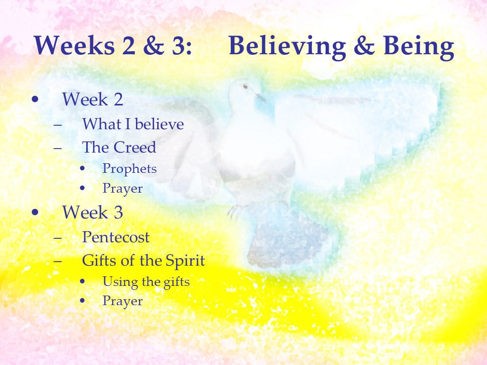 Week 4:Becoming Becoming a Witness –Fruits of the Spirit –Pay It Forward –What have we learned –Evaluation