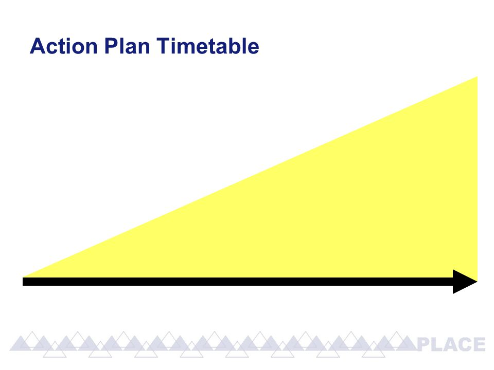 Action Plan Timetable
