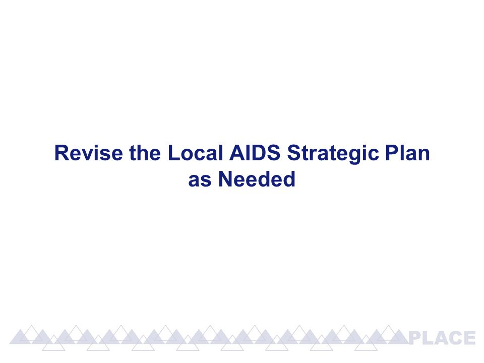 Revise the Local AIDS Strategic Plan as Needed