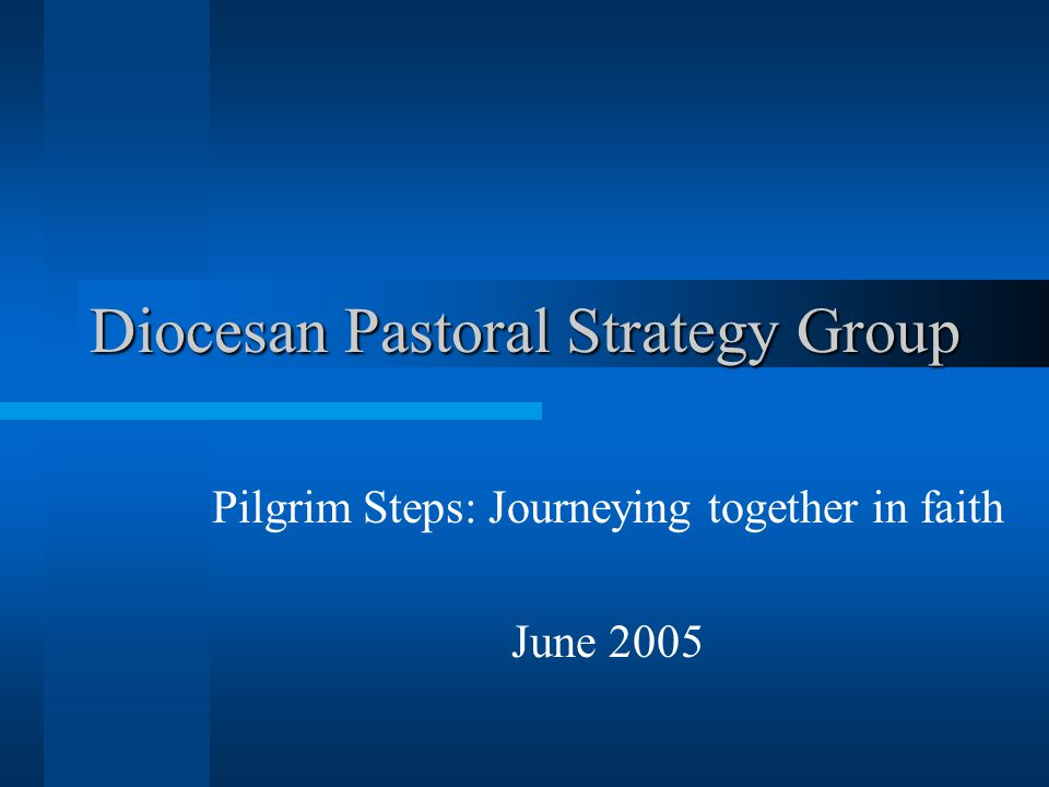 Diocesan Pastoral Strategy Group Pilgrim Steps: Journeying together in faith June 2005