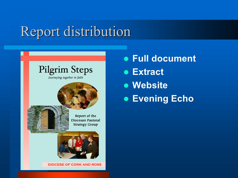 Report distribution Full document Extract Website Evening Echo