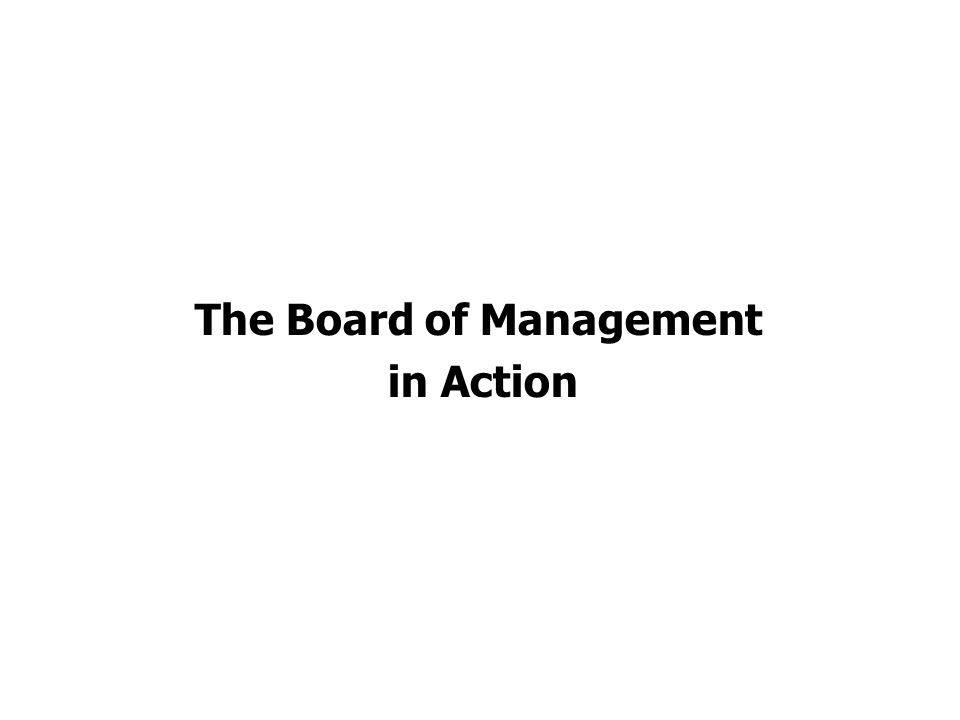 The Board of Management in Action