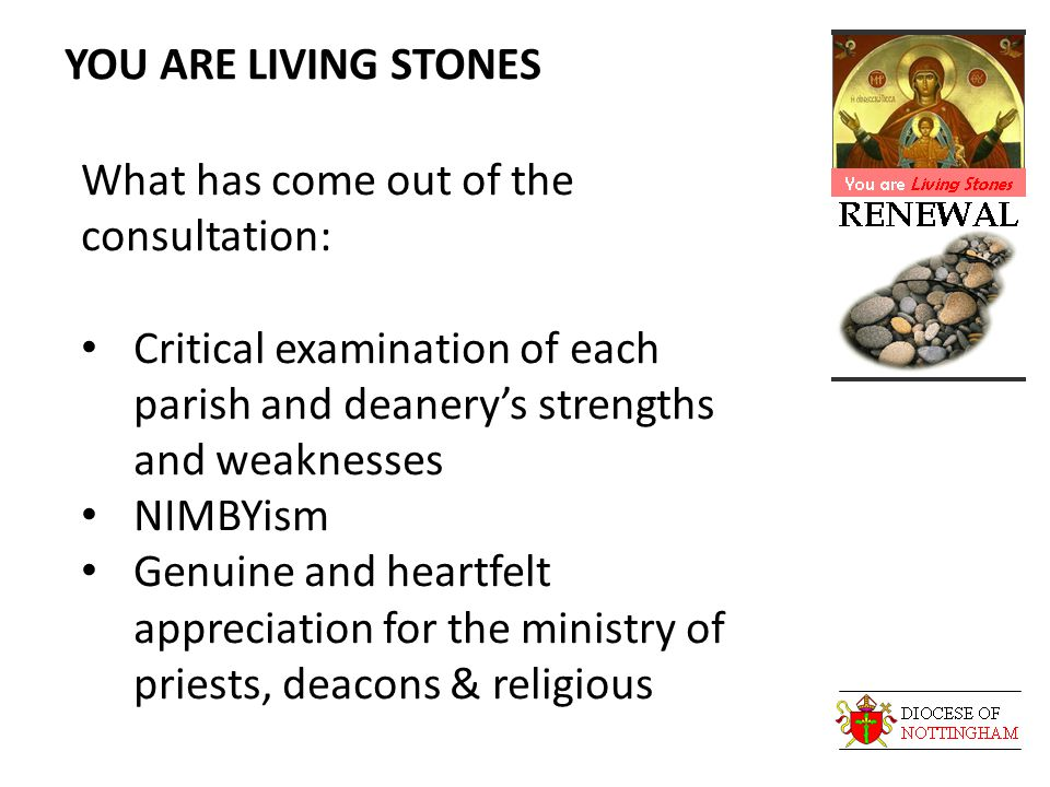 YOU ARE LIVING STONES What has come out of the consultation: Critical examination of each parish and deanery's strengths and weaknesses NIMBYism Genuine and heartfelt appreciation for the ministry of priests, deacons & religious