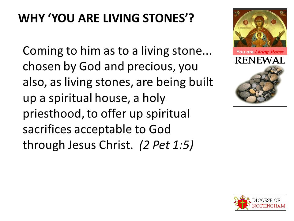 WHY 'YOU ARE LIVING STONES'. Coming to him as to a living stone...