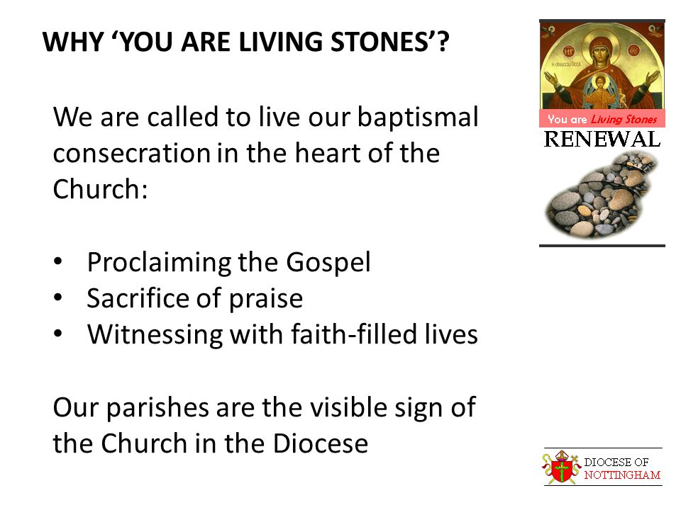 WHY 'YOU ARE LIVING STONES'.