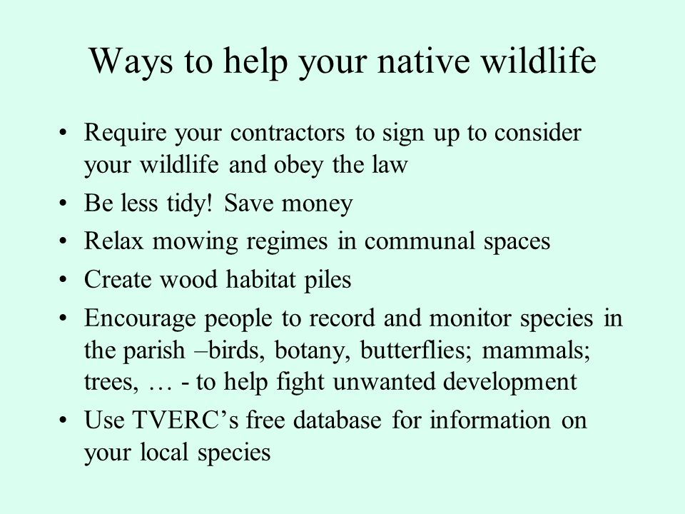 Support for councillors In Conservation Target Areas: Book a visit by an ecologist (50/50) through ONCF
