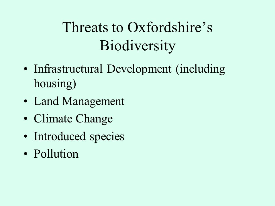 Why should we 'have regard for' biodiversity.
