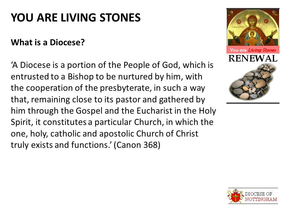 YOU ARE LIVING STONES What is a Diocese.
