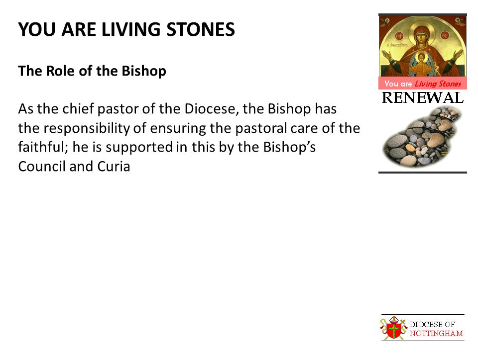 YOU ARE LIVING STONES The Role of the Bishop As the chief pastor of the Diocese, the Bishop has the responsibility of ensuring the pastoral care of the faithful; he is supported in this by the Bishop's Council and Curia