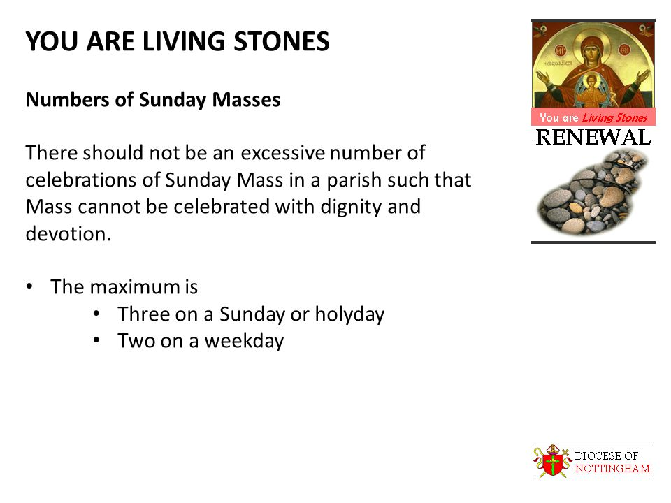 YOU ARE LIVING STONES Numbers of Sunday Masses There should not be an excessive number of celebrations of Sunday Mass in a parish such that Mass cannot be celebrated with dignity and devotion.