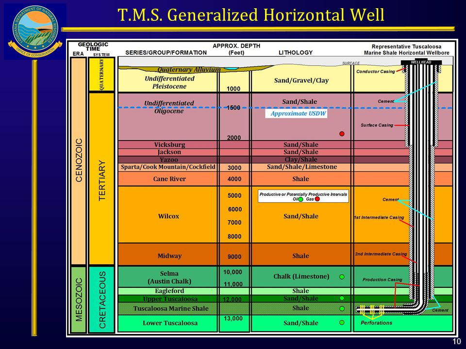 T.M.S. Generalized Horizontal Well 10