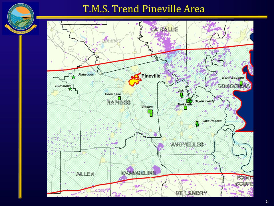 T.M.S. Trend Pineville Area 5