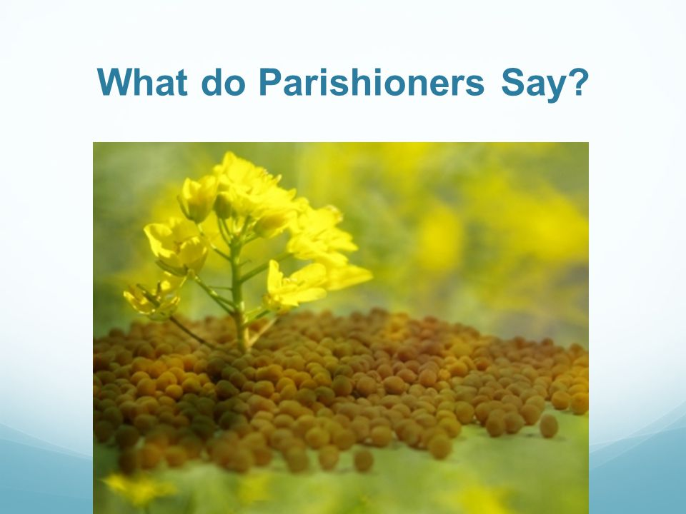 What do Parishioners Say?
