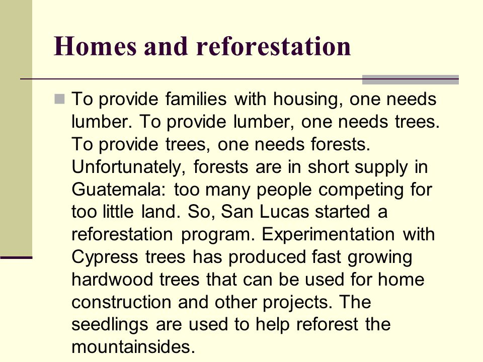 Homes and reforestation To provide families with housing, one needs lumber.