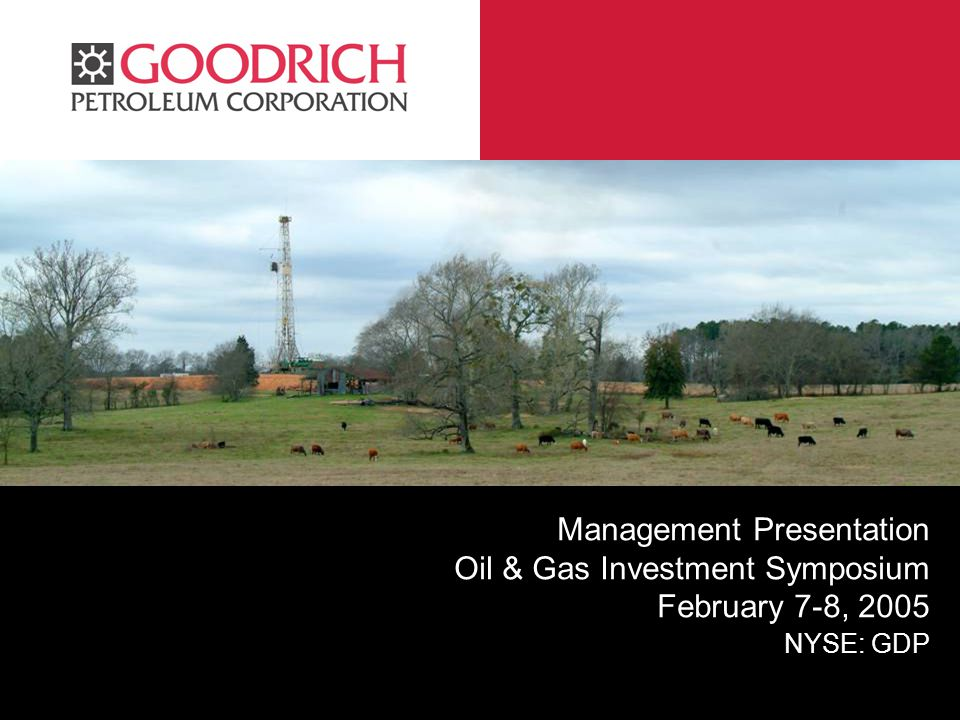 GPC Management Presentation Oil & Gas Investment Symposium February 7-8, 2005 NYSE: GDP