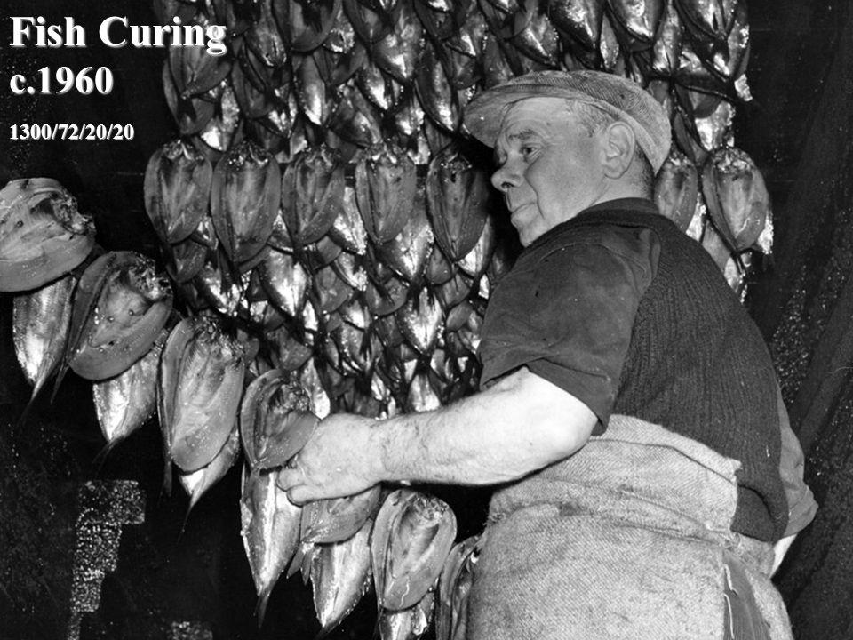 1300/72/20/20 Fish Curing c.1960
