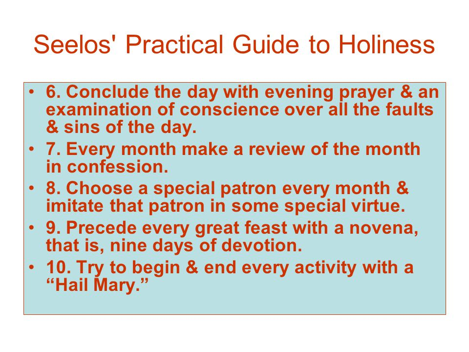 Seelos Practical Guide to Holiness 6.