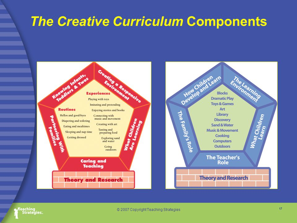 17 © 2007 Copyright Teaching Strategies The Creative Curriculum Components