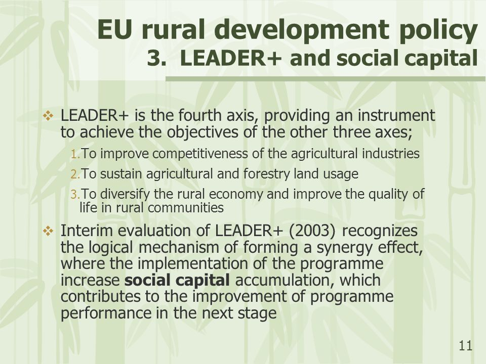 11 EU rural development policy 3. LEADER+ and social capital  LEADER+ is the fourth axis, providing an instrument to achieve the objectives of the ot