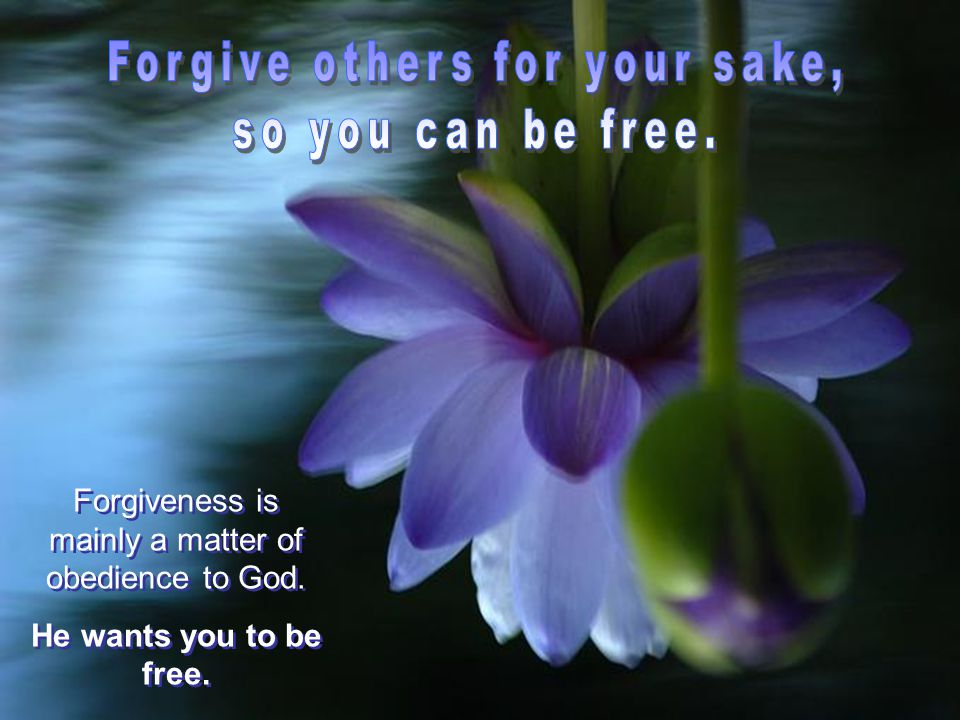 Forgiveness is mainly a matter of obedience to God.