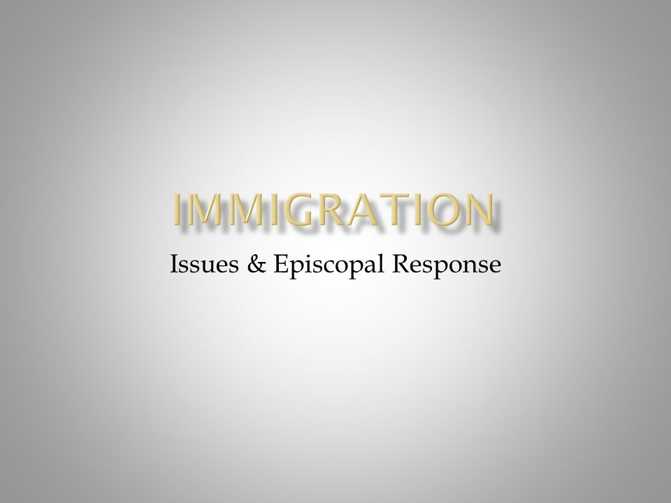 Issues & Episcopal Response