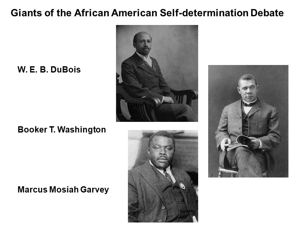 Giants of the African American Self-determination Debate W.