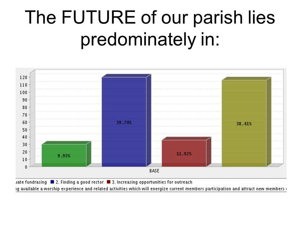 The FUTURE of our parish lies predominately in: