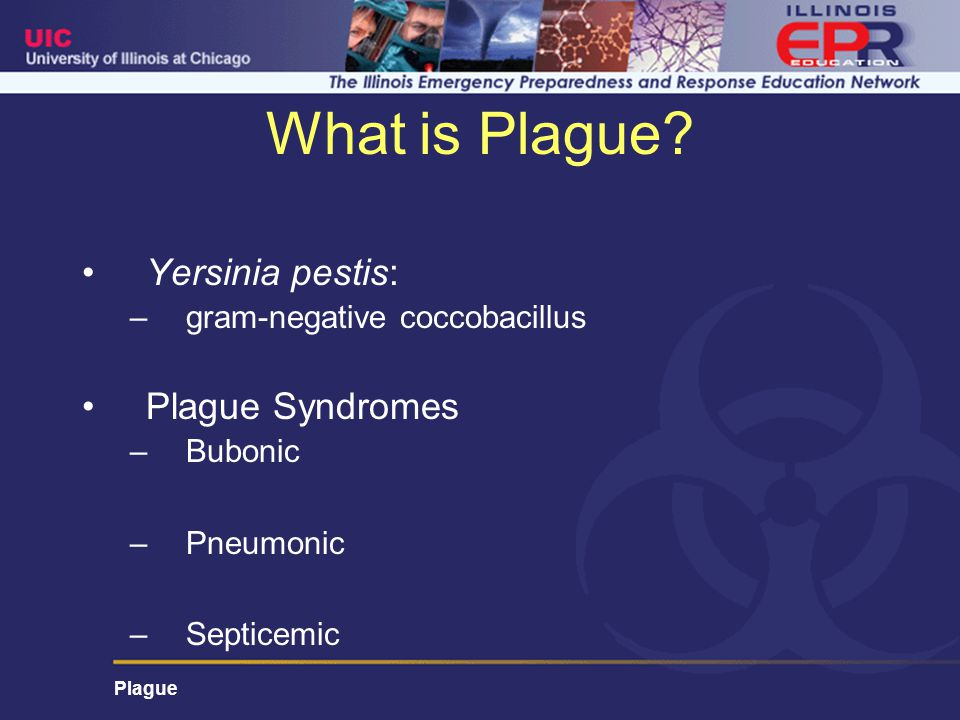 Plague What is Plague.