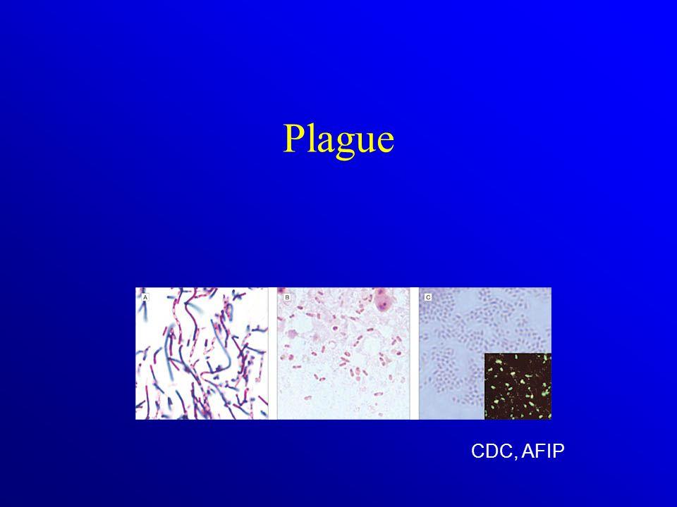 Plague CDC, AFIP