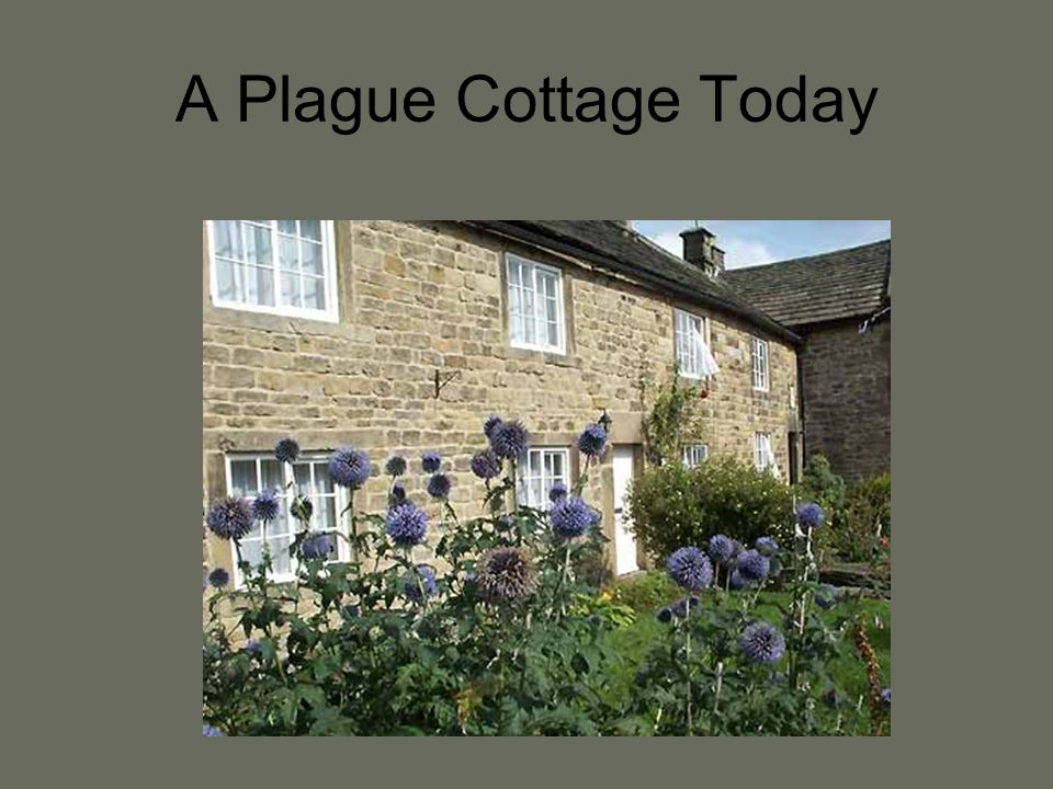 A Plague Cottage Today