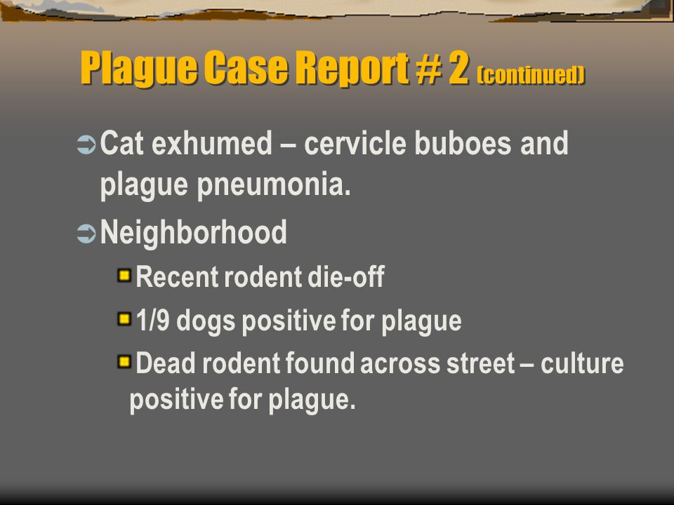 Plague Case Report # 2 (continued)  Cat exhumed – cervicle buboes and plague pneumonia.