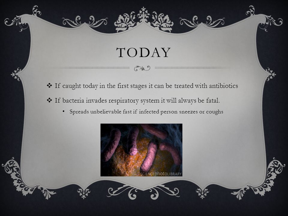 TODAY  If caught today in the first stages it can be treated with antibiotics  If bacteria invades respiratory system it will always be fatal. Sprea