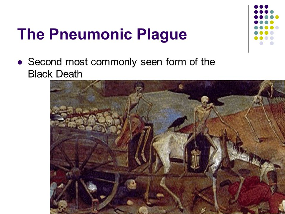 The Pneumonic Plague  Infected the lungs.