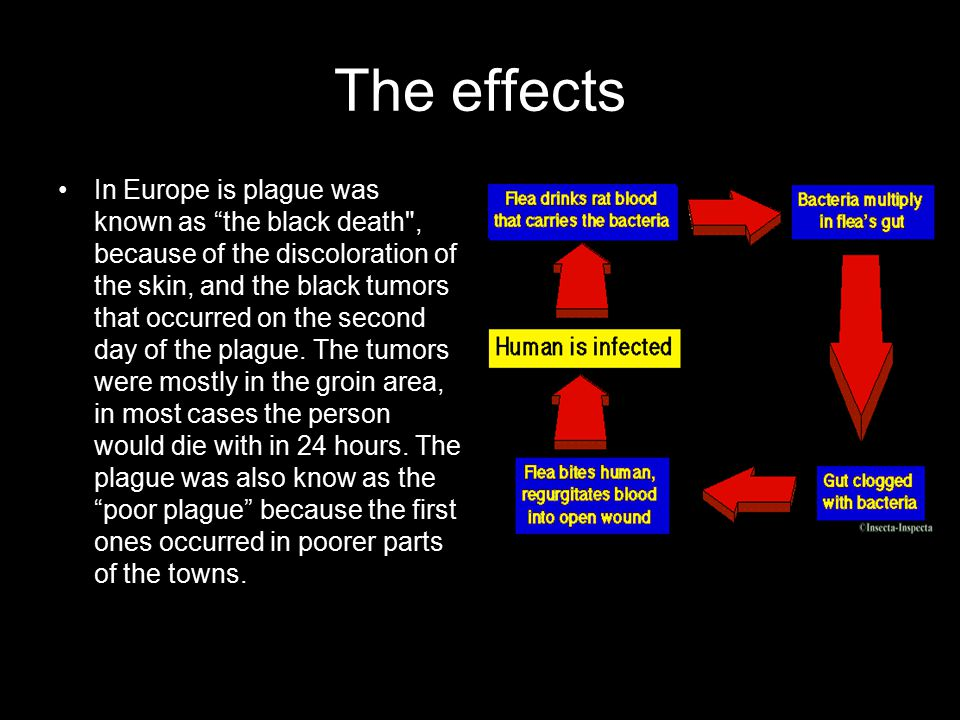 The effects In Europe is plague was known as the black death , because of the discoloration of the skin, and the black tumors that occurred on the second day of the plague.
