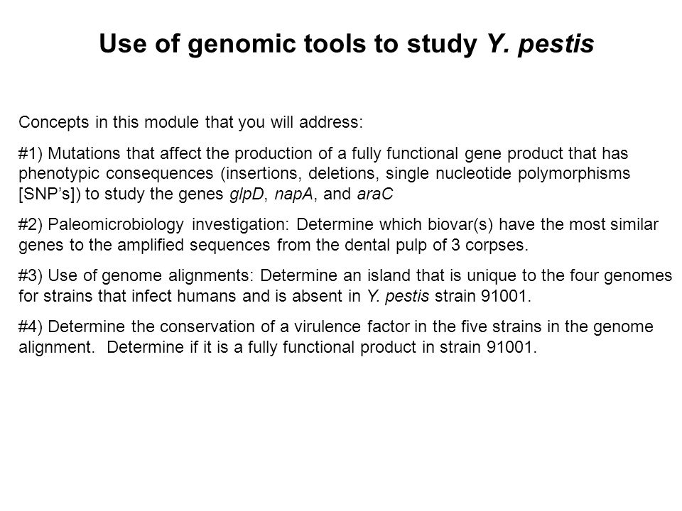 Use of genomic tools to study Y. pestis Concepts in this module that you will address: #1) Mutations that affect the production of a fully functional
