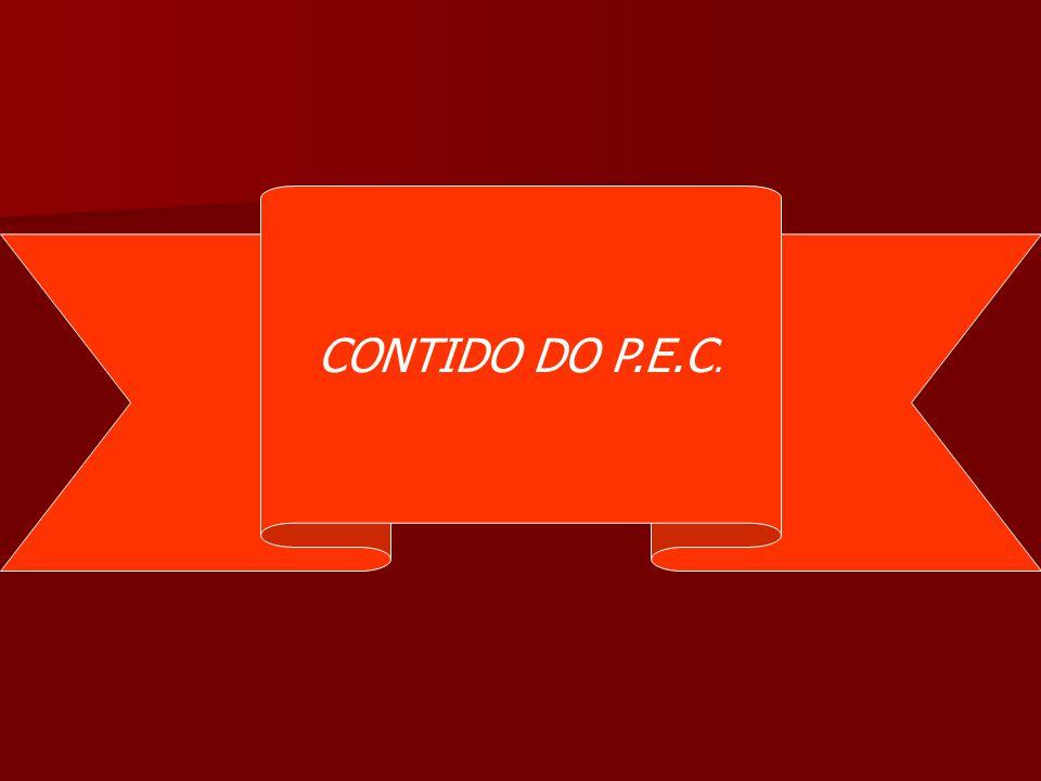 CONTIDO DO P.E.C.