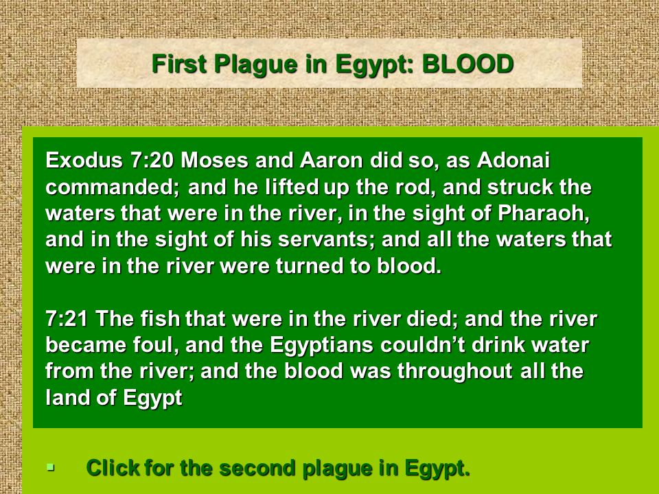 First Plague in Egypt: BLOOD Exodus 7:20 Moses and Aaron did so, as Adonai commanded; and he lifted up the rod, and struck the waters that were in the river, in the sight of Pharaoh, and in the sight of his servants; and all the waters that were in the river were turned to blood.