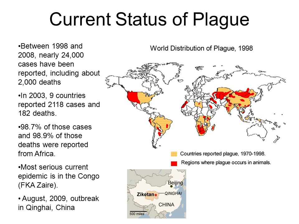 Current Status of Plague Between 1998 and 2008, nearly 24,000 cases have been reported, including about 2,000 deaths In 2003, 9 countries reported 2118 cases and 182 deaths.