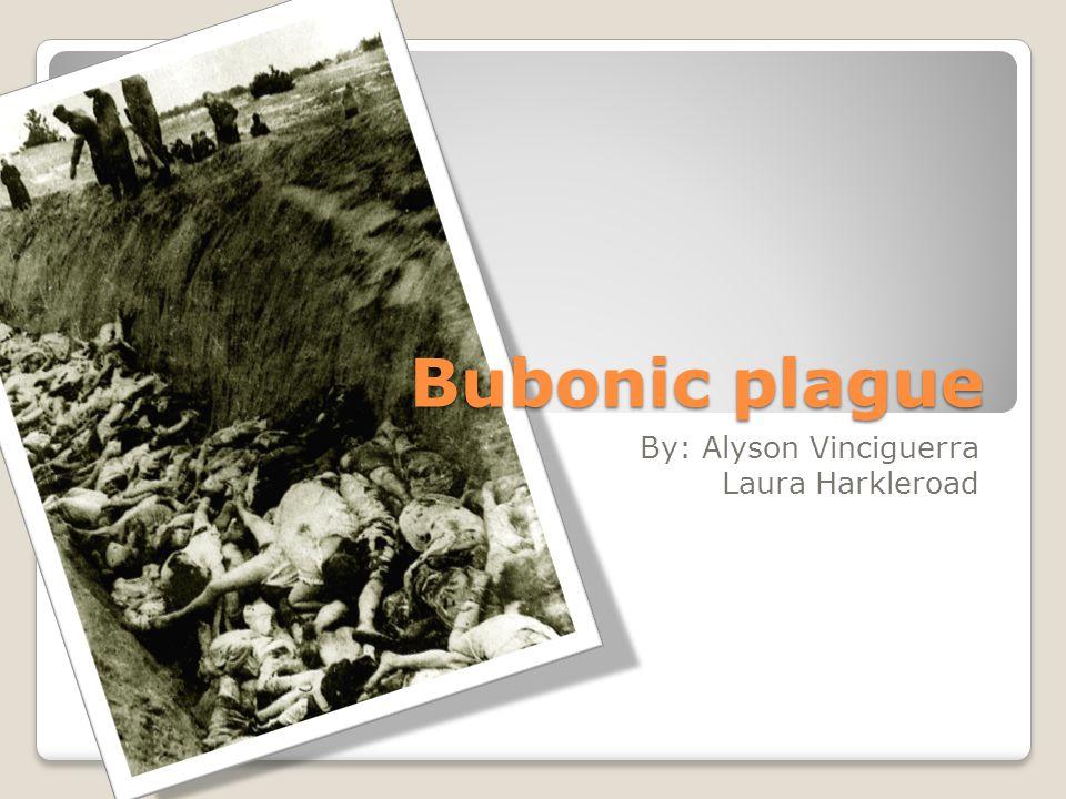 Bubonic plague By: Alyson Vinciguerra Laura Harkleroad
