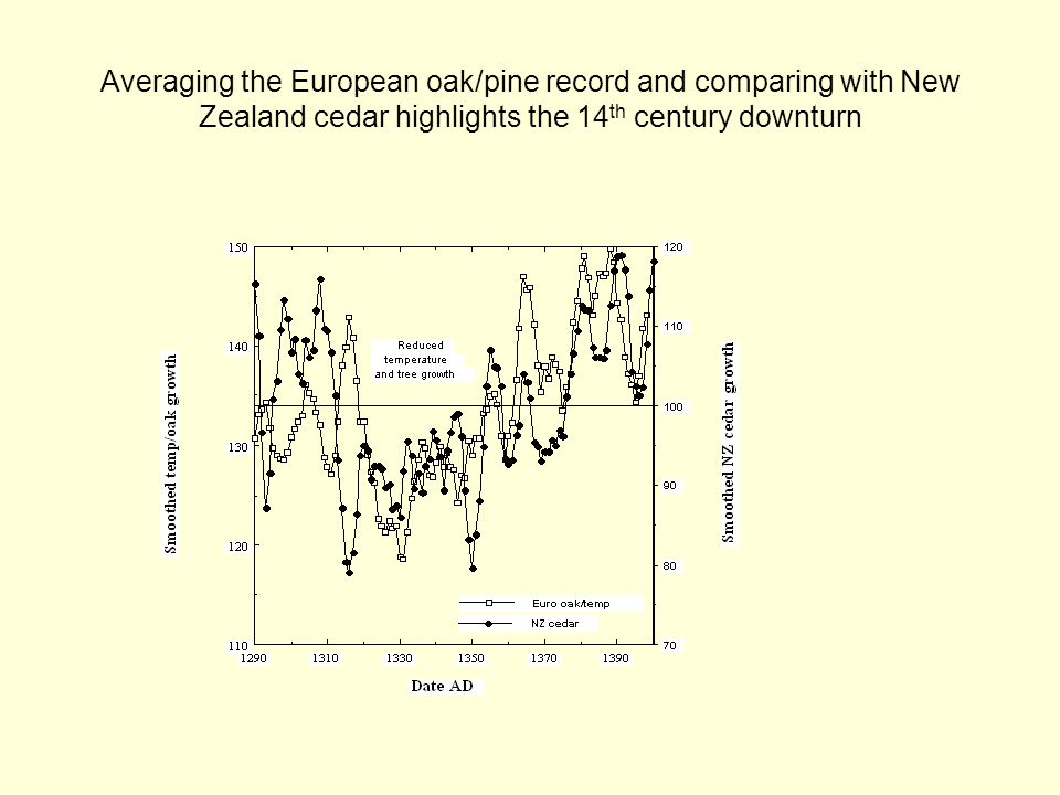 Averaging the European oak/pine record and comparing with New Zealand cedar highlights the 14 th century downturn