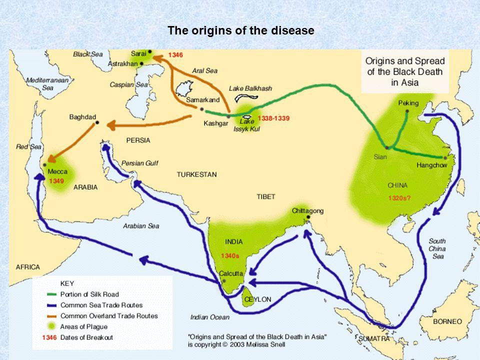 The origins of the disease