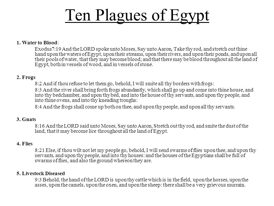 Ten Plagues of Egypt 6.